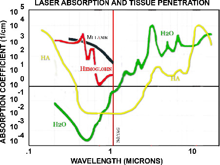 Laser Absorption and Tissue Penetration Graph
